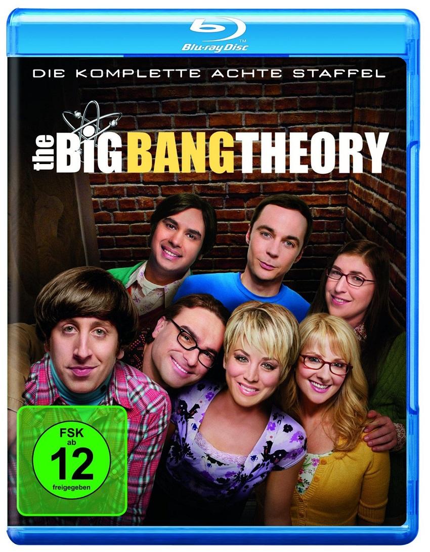Staffel 8 Big Bang